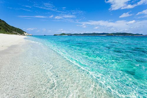 The Weekender Palm Beach